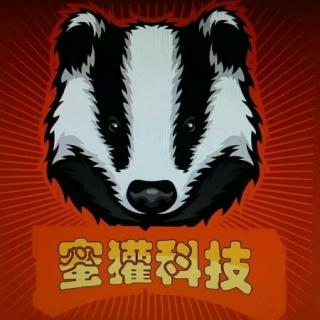 星獾科技经营服务: 宣传单设计 企业网站