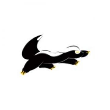网站建设网站开发网站设计【星獾科技|线上服务】