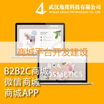 B2B2C/微信商城/商城APP【角度科技|线上服务】
