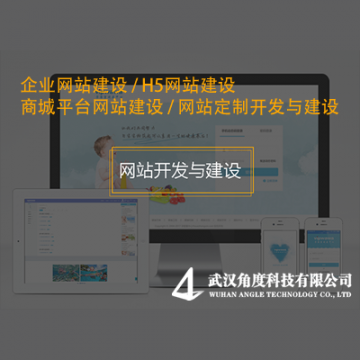 网站开发与建设/平台定制开发