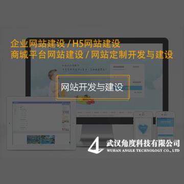 网站开发与建设/平台定制开发【角度科技|线上服务】