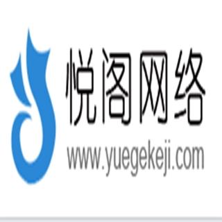 悦阁科技经营服务: 网站开发