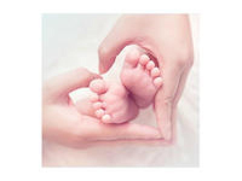 【道道的服务小站】免费孕前优生健康检查项目信息系统接口开发,软件开发>>网站建设>>接口开发