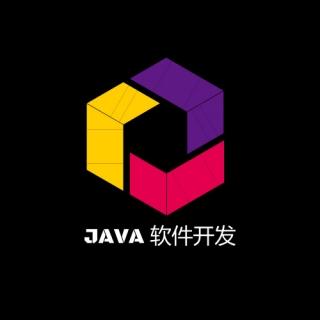 软件开发主营: 网站开发