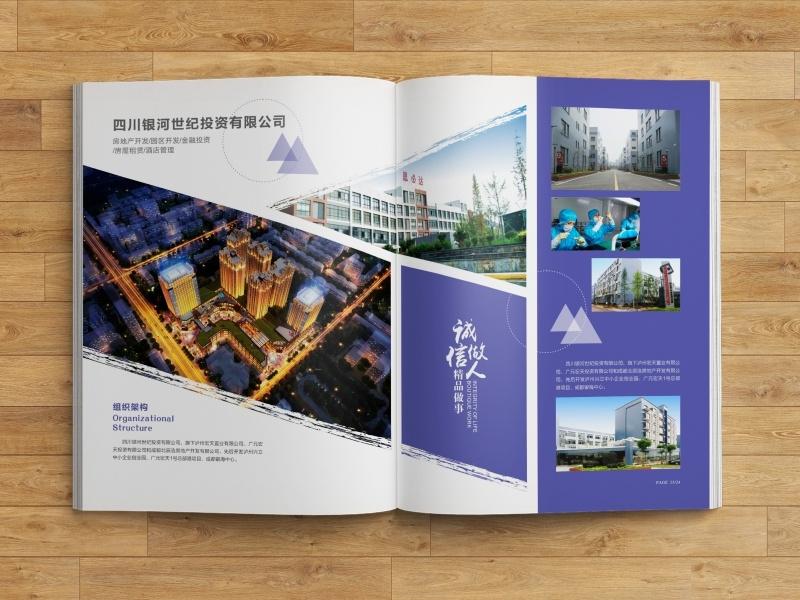 【一格创意设计工作室】画册合计 宣传单设计 折页设计 宣传品设计,技能专长>>图形动画>>平面设计