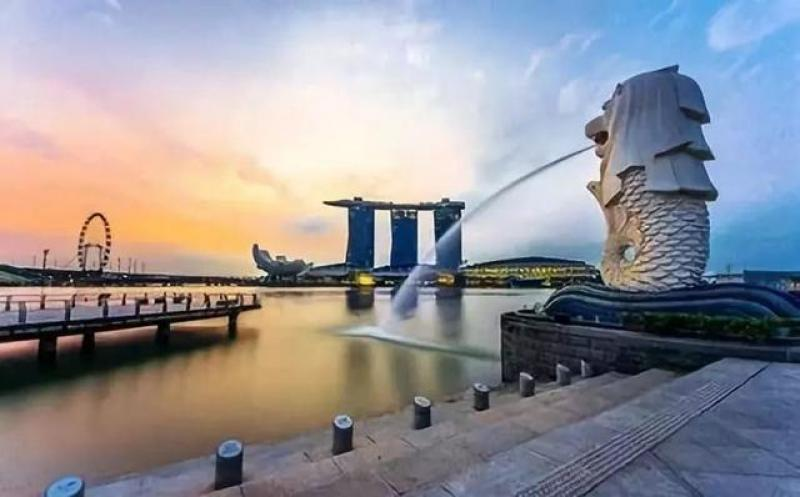 """【蚂蚜仔仔】设计菜鸟到设计大咖的进阶之道——""""新加坡游学之旅"""""""