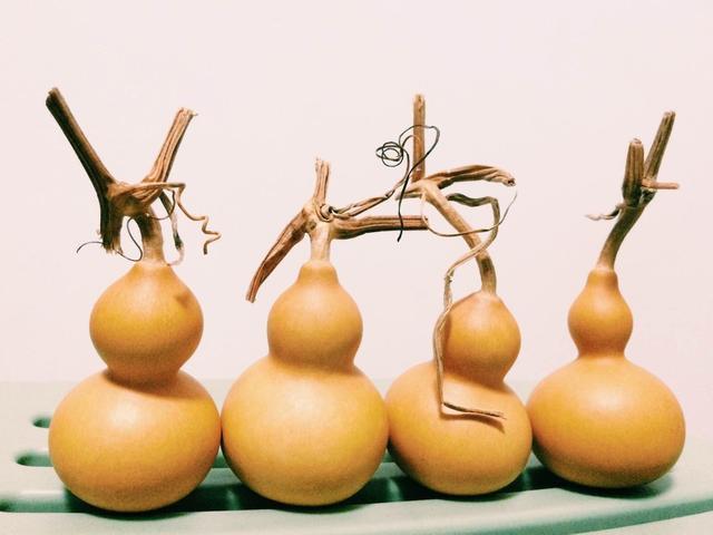 让人叹为观止的用户葫芦制作的精美民间手工艺术品