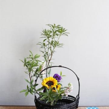 希望能技能交换,我是一名中华传统花艺插花师。