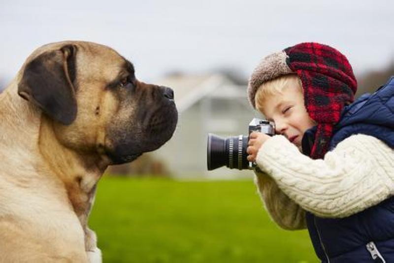 宠物拍摄小技巧:如何拍摄高大上的宠物照片!