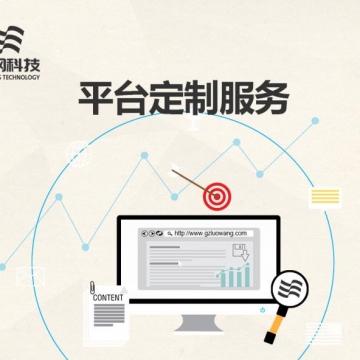 定制、模板、仿站包你满意的服务体系!【罗网科技|线上服务】