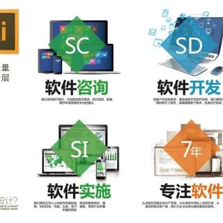 软件开发网站制作APP执经营服务: 网站开发