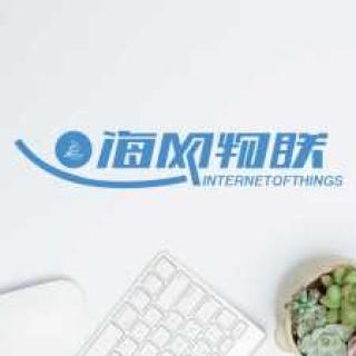 海网物联(深圳)科技有限经营服务: 手机应用 微信小程序 电商网站