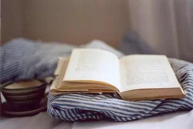 """【想穿婚纱的孩纸】小学不抓紧,初中徒伤悲!小学怎样""""陪读""""?(建议家长都看看)"""