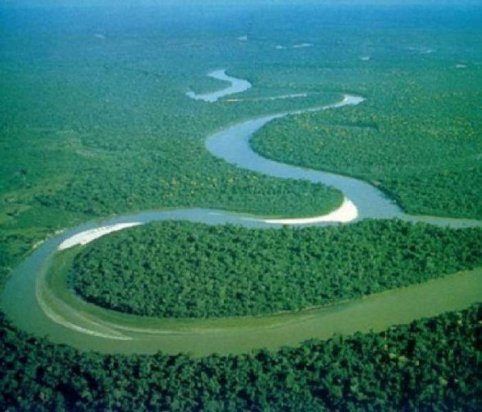 亚马逊雨林大面积燃烧,二氧化碳含量激增,或引发全球气候大变化