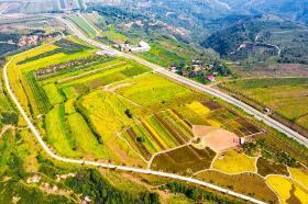 【哇好像筷子精】塬上农民自己家的丰收节,他们用勤劳换来喜悦,地坑院晒秋成一景