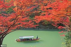 【本宫叫帅姐】日本绝美赏枫地 入秋去岛国赴一场秋天的约会吧