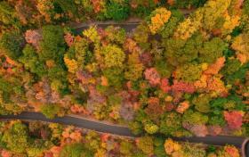 【眉梢眼角藏欢】上帝视角看各国最美秋天 邂逅一场色彩的盛宴