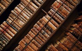 【小清新范】你的 KIndle 可能还在吃灰,但图书馆里借电子书的人越来越多