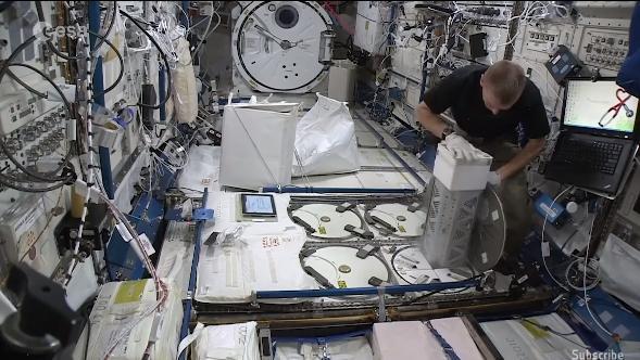 【野区小霸王】欧空局正尝试在国际空间站培育人造血管