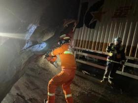 【千里故人稀】北京九级大风来袭,直径半米大树砸到正在行驶的货车上