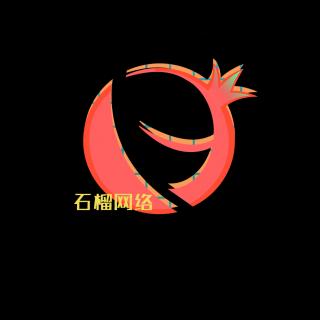 石榴网络主营: 店铺设计
