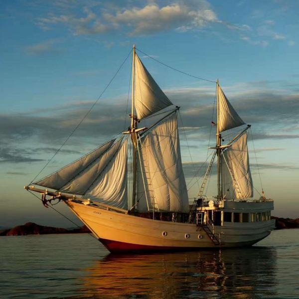 【易航游艇租赁服务有限公司】游艇租赁服务,时间出售 >> 时间陪伴 >> 其它