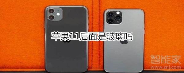 苹果11后面是玻璃吗_设计服务_平面设计-蚂蚜网(兼职|接单|私活|外包)