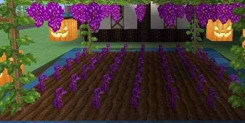 奶块遗忘之境种子怎么种植奶块遗忘之境种子种植方法详解_软件开发_IT综合服务-蚂蚜网(兼职|接单|私活|外包)