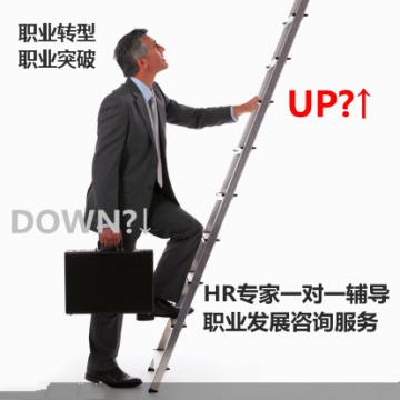 职业转型跳槽职业发展规划 HR专家中国职业规划师一对一咨询服务【线上服务】