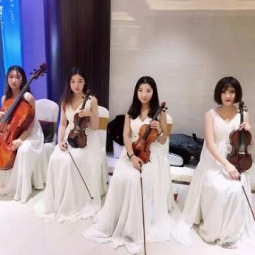 欧美乐队大小提琴民乐古筝竖琴婚庆婚礼晚会庆典