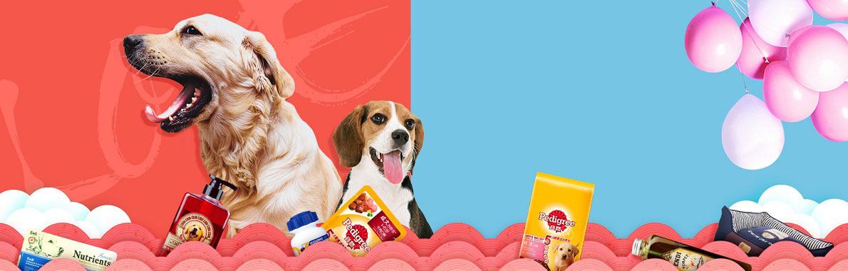 【精彩生活|宠物服务】宠物服务优质服务_宠物服务任务订单_宠物服务专业服务商-蚂蚜网(兼职|接单|私活|外包)